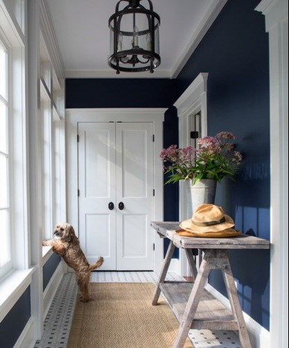 dark blue hallway with white doors and trim and a small dog looking out the window